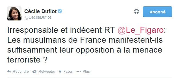 Duflot Figaro