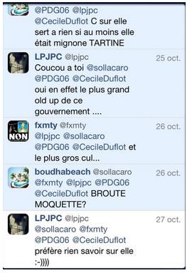 Duflot Twitter
